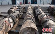千年古城江中捞出石柱或是清代文庙龙柱