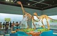宁波博物馆举办《恐龙诞生之谜》专题展
