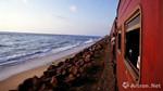 上博考古队8月赴斯里兰卡进行发掘