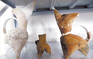 泗洪赵庄遗址考古新发现5000年前江苏人已养畜烧窑