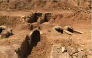 新昌发现古墓葬群 墓葬时间跨越千年