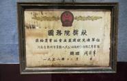 巩义市博物馆举办近现代征集文物展