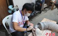 年轻一代助力寿山石雕非遗传承 传统工艺再焕生机