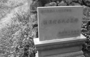 海口一元代七品官古墓被盗挖