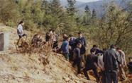 株洲县蛇形山发掘的东汉砖室墓
