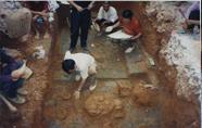 醴陵市城区阳三石汉墓发掘