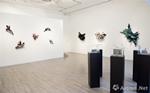 以色列艺术家:阿泰·翰在京首次个展
