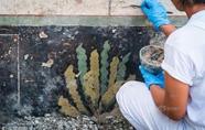 意大利庞贝古城考古新发现