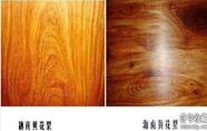 海南黄花梨与越南黄花梨有哪些异同?