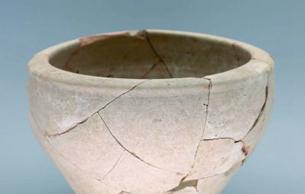 陕西省考古研究院与中亚国家联合考古取得阶段性成果