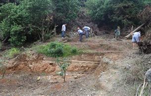 临海市桃渚镇涧五村宋墓考古发掘进展顺利