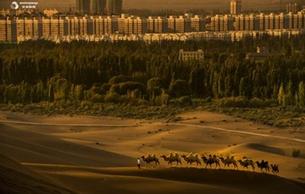 新疆鄯善县打造三大主题利来国际娱乐