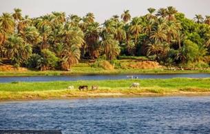 尼罗河三角洲与埃及古文明联系紧密