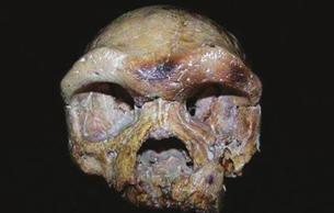 考古新发现:亚洲人群具有多样性的祖先