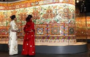 中国最大藏医药主题博物馆完成改扩建