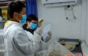 西北大學收藏5000多具古代人骨標本 或破秦人謎題