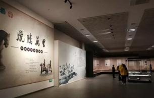 """""""中国古代马文化展""""在桂林博物馆开幕"""