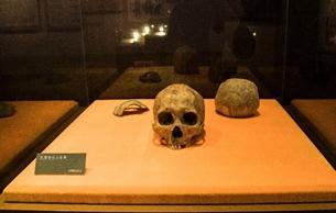 """专家确认中国最北早期人类""""扎赉诺尔人""""距今一万余年"""