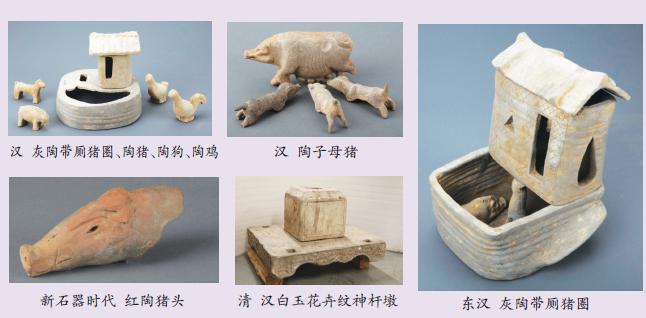 汉字作为中国传统文化的重要载体,固化着最富人文情怀的史实。从数千年前被拘驯开始,六畜中犬、牛、羊都曾寄于屋下,而唯有豕于屋下成为家的会意。它是猪和人紧密关系最直接的见证。家字在甲骨文中写作,从字形上看,房屋里有一头猪,表示豢养猪畜的稳定居所,是人类经历迁徙走向定居,生活安宁、富足的见证。有学者根据殷墟卜辞其侑报于上甲家飨父庚、父甲家等线索,认识到家是祭祀祖先的地方,是宗庙飨大高者,彘为上牲。还有学者认为家通嘉,以嘉礼(婚姻)为本,正如猪的多子,繁衍兴旺才是家。