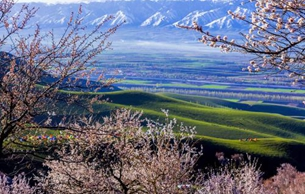 中原生铁技术或早至战国时期已传播至新疆
