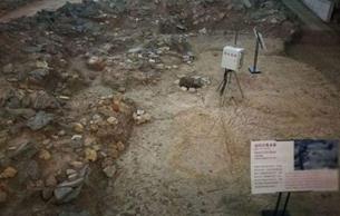 南越国北宫墙地基遗址确定 考古专家谈挖掘往事