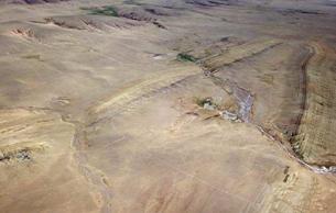 青藏高原发现棕榈叶化石 为其抬升历史提供新证据