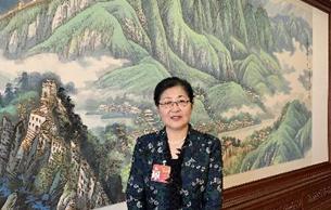 宋纪蓉委员:建议成立历史文化名城名镇保护修复标准制定委员会