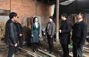 浙江省文物局扎实推进扶贫结对帮扶工作